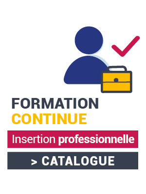 Catalogue formation continue Insertion professionnelle (.pdf, 6,4 Mo)