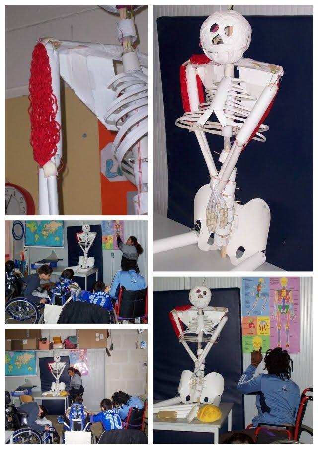 squelette en carton