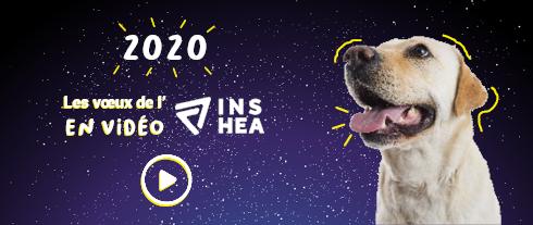 2020 ! L'INSHEA vous présente ses vœux en vidéo